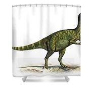 Deinocheirus Mirificus, A Prehistoric Shower Curtain