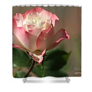 Delany Sister Rose Shower Curtain