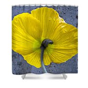 Delicate And Strong Shower Curtain