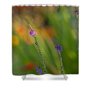 Delicate And Vivid Shower Curtain