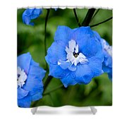Delicate Blue Shower Curtain