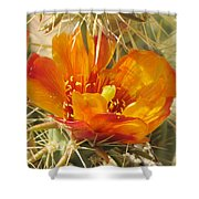 Delicate Cactus Flower Shower Curtain