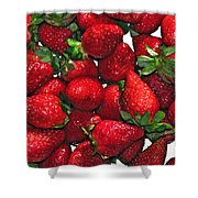 Deliciously Sweet Strawberries Shower Curtain