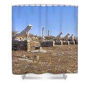 Delos Shower Curtain by Joana Kruse