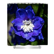 Delphinium Face Shower Curtain