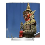 Demon Guardian Shower Curtain