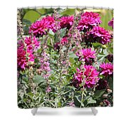 Demure Dahlias Shower Curtain