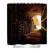 Den Of Dionysus Shower Curtain