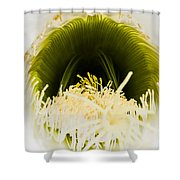 Depths Of The Cactus Flower Shower Curtain