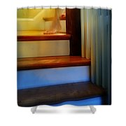 Descending The Stairs Shower Curtain
