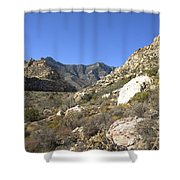 Desert And Mountains Shower Curtain