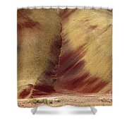 Desert Brushstrokes Shower Curtain