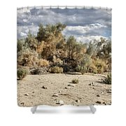 Desert Cloud Palm Springs Shower Curtain