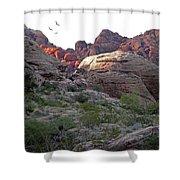 Desert Glow Shower Curtain