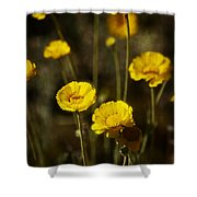 Desert Marigold Shower Curtain