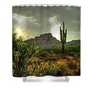 Desert Sun Rays Shower Curtain
