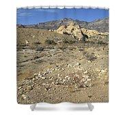 Desert Washout Shower Curtain