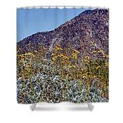 Desert Yellow Shower Curtain