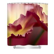 Detail Of Crimson Colored Rose Petals Shower Curtain