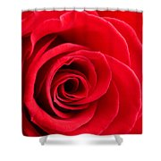 Detail Of Red Rose Shower Curtain