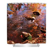Details In Nature Shower Curtain