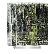 Details Of A Florida River Shower Curtain