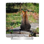 Determined Encouraging Cat Photo Shower Curtain