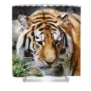 Detroit Tiger Shower Curtain