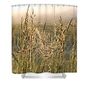 Dew And Spider Webs Shower Curtain