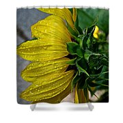 Dew Droop Shower Curtain