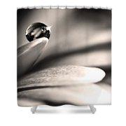 Dew Drop In Flower Petal Shower Curtain