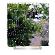 Dewdrops Dimension Shower Curtain