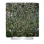 Diamonds By Nature Shower Curtain