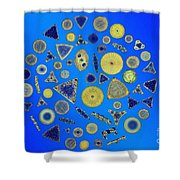 Diatom Arrangement Shower Curtain