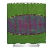Diatom - Surirella Shower Curtain by Eric V. Grave
