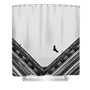 Diciasettegiugno2011 19.12 Shower Curtain