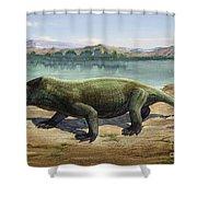 Dicynodon Trautscholdi, A Prehistoric Shower Curtain