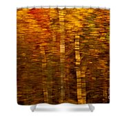 Did You Say Trees Shower Curtain