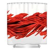 Digital Streak Image Of A Poinsettia Shower Curtain