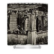 Dilapidated House Shower Curtain