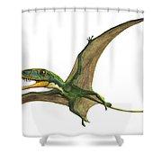 Dimorphodon Macronyx, A Prehistoric Era Shower Curtain