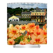Dingle And Flower Pot Shower Curtain
