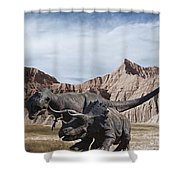 Dino's In The Badlands Shower Curtain