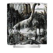 Dinosaurs Shower Curtain
