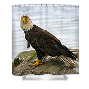 Dirty Bird Shower Curtain