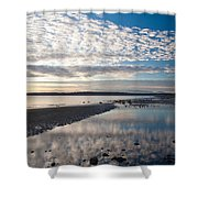 Discovery Park Tidepools Shower Curtain