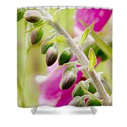 Discussing When To Bloom Shower Curtain by Rory Sagner