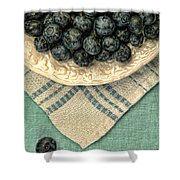 Dish Of Fresh Blueberries Shower Curtain