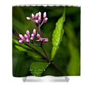 Ditch Mystery Shower Curtain
