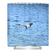 Dive Shower Curtain